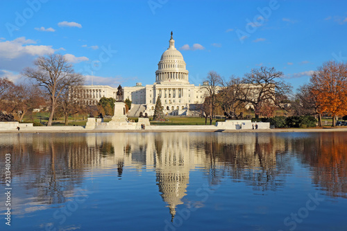 Tuinposter Amerikaanse Plekken Back of the United States Capitol building and reflecting pool