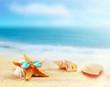 Beach. Summer. Starfish in sunglasses on the seashore.