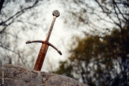 Excalibur the famous sword in the stone of king Arthur in the forest, Llangorse Wallpaper Mural