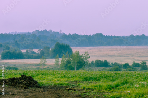 Foto op Canvas Purper Fog over fields, landscape