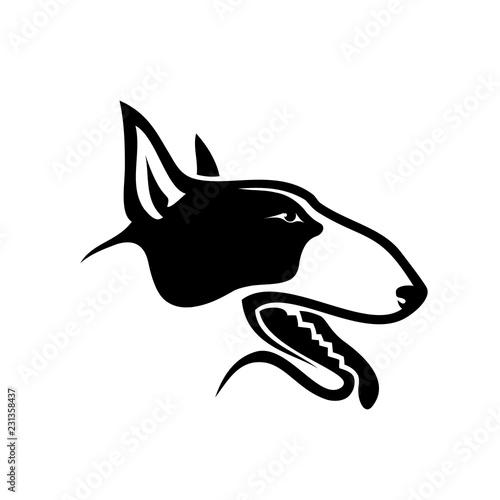 Vászonkép Bull terrier dog