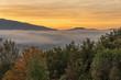 Nebbia in Garfagnana