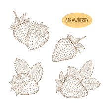 Strawberry. Berry. Set. Plain Pattern On A White Background. Coloring.