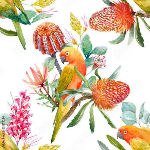 Fotobehang Papegaai Watercolor tropical parrots pattern