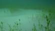 Unterwasserlandschaft 12