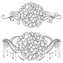 Vector Drawing Of Outline Hydrangea Or Hortensia Flower Bunch And Swirls In Black Isolated On White Background. Floral Horizontal Composition Of Contour Hydrangea For Coloring Book Or Tattoo Design.