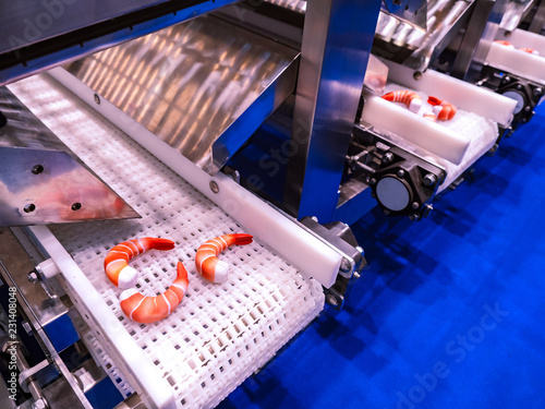 Shrimp processing. Food production. Conveyor line for shrimp processing.