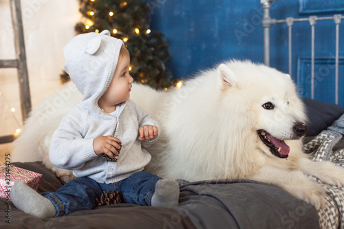 A little baby is sitting with a white fluffy dog - a samoyed against a brick wall, gifts ...
