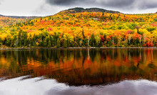 Fall Colors Of Lac Legault Wit...