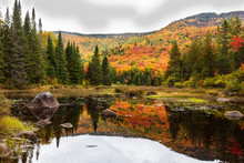 Fall Scene In The Quebec Cotta...