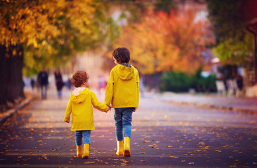 Fototapeta two happy kids, brothers walking together on autumn street in yellow raincoats and rubber boots