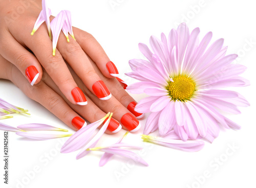 Fotografie, Obraz  Woman hands with french manicure and flower on white background