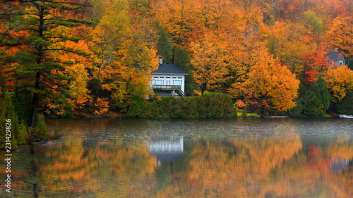 obraz PCV Scenic autumn landscape in Quebec country side