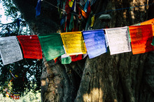 View Of The Colorful Tibetan F...