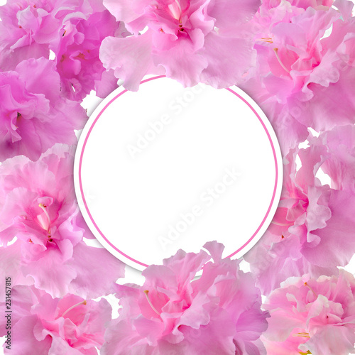 Fotobehang Bloemen Festive floral frame template with pink gentle azalea flowers and blank round white space for text. Elegant flower design in romantic style