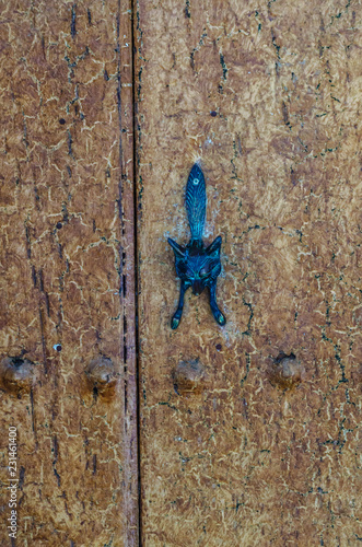 Fotografía  Door with brass knocker in the shape of a fox, beautiful entrance to the house