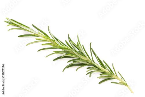 Keuken foto achterwand Aromatische Rosemary spice on the white background.