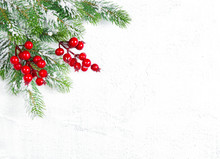 Christmas Tree Branches Red Berries Decoration