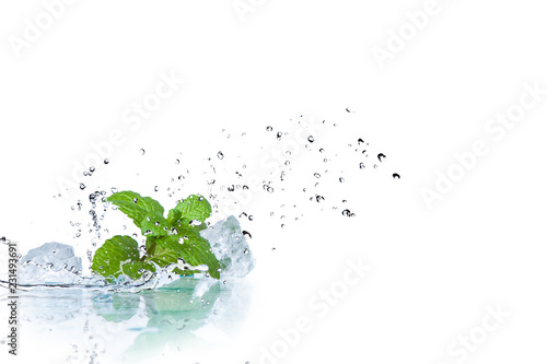 Obraz ice cubes and splashing water with mint on a white background - fototapety do salonu