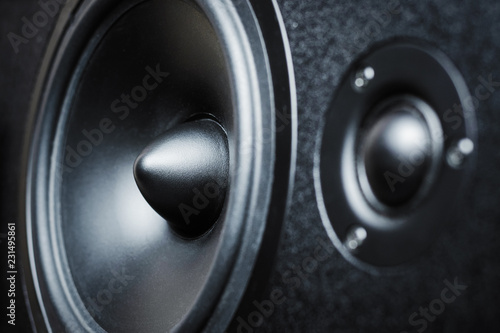 Close up of high and low frequency speakers, membrane audio speaker - 231495861