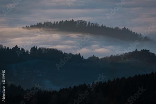 Poster Morning with fog Coucher de Soleil sur la Forêt Noire