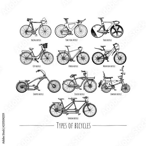 Fotomural Types of bikes