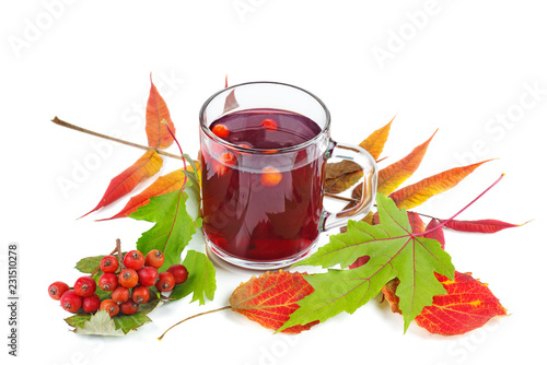 Fotografie, Obraz  Glass of rowan stew isolated on white background