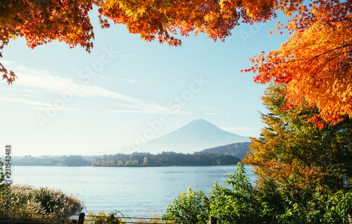 Tuinposter Asia land Fuji mountain view. The most famous mount in japan