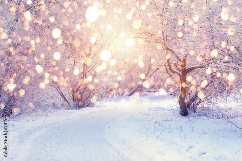 Winter holiday illumination Canvas-taulu