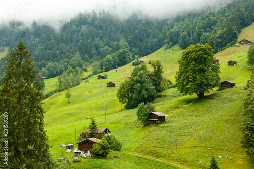 Fotografie, Obraz  Swiss landscape village in the mountains