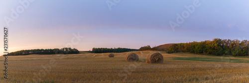 Obraz na płótnie Round Hay Bale on the Prairie in Autumn