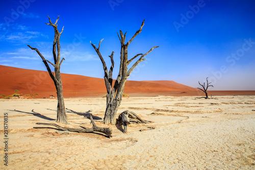 Fotografering  Namibia - Sesriem - Sossusvlei