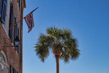 Palmetto Tree And Flag