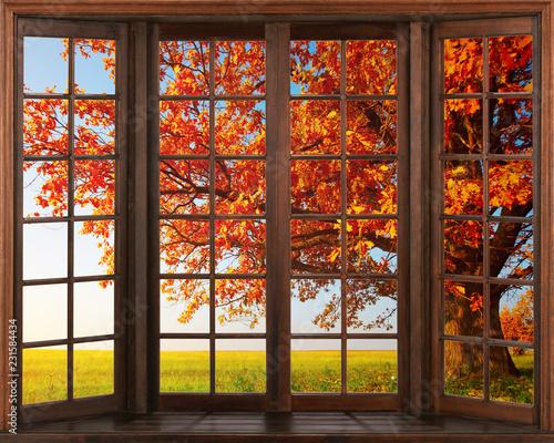 widok-okna-3d-piekny-widok-przyrody-z-okna