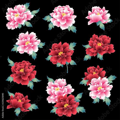 Foto  日本的な牡丹花,