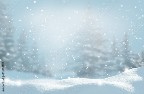 Foto auf Gartenposter Licht blau Beautiful winter landscape with snow covered trees.Christmas background