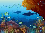 Fototapeta Do akwarium - Underwater sea - sharks, coral reef, fish