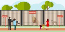 Zoo, Predators In Cages. Adult...