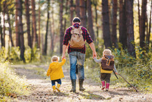 A Rear View Of Father With Toddler Children Walking In An Autumn Forest.