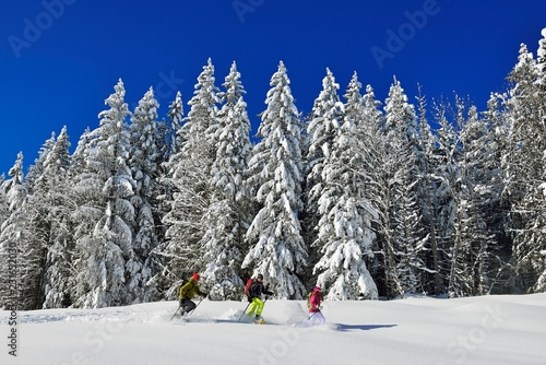 Foto op Canvas Wintersporten Snowshoe hikers in front of a snow-covered forest on the premium winter hiking trail of the Hemmersuppenalm, Reit im Winkl, Chiemgau, Bavaria, Germany, Europe