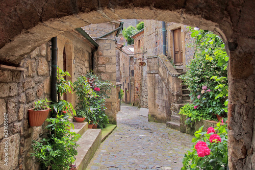 Fototapety, obrazy: Romantic view to the pittoresque street in Sorano, Tuscany