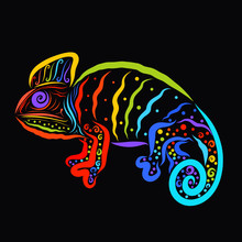 Creative Rainbow Chameleon Wit...
