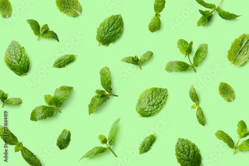 Green pattern of mint leaves