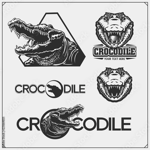 Photo The emblems with crocodile for a sport team