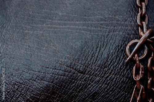 Photo  Eisenkette auf Elefantenhaut