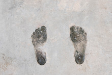 Footprint Human On Cement. Background And Texture Of Footprint. Wet And Dirty Of Footprint Human On Cement.
