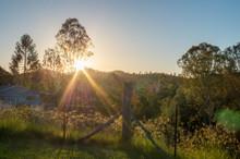 Australian Bushland And Rural Backyard At Sunset