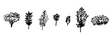 Trees Icons In Hand Drawn Scandinavian Style.