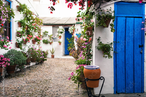 Fotografie, Obraz Typical andalusian courtyard in Cordoba, Andalusia Spain