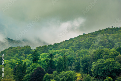Foto auf Leinwand Olivgrun Elterwater, Lake District, Cumbria